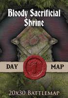 Seafoot Games - Bloody Sacrificial Shrine | 20x30 Battlemap