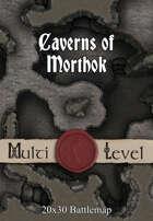 Seafoot Games - Caverns of Morthok | 20x30 Battlemap