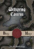 Seafoot Games - Wellspring Caverns | 40x30 Battlemap