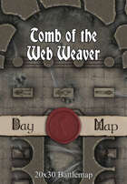Seafoot Games - Tomb of the Web Weaver | 20x30 Battlemap