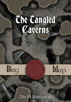 Seafoot Games - The Tangled Caverns | 20x30 Battlemap