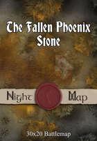 30x20 Battlemap - The Fallen Phoenix Stone (Night)