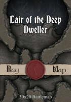 30x20 Battlemap - Lair of the Deep Dweller