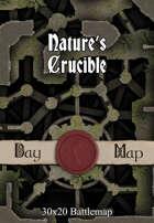 30x20 Battlemap - Nature's Crucible