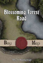 30x20 Battlemap - Blossoming Forest Road