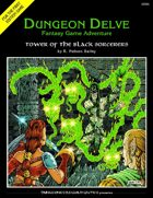 Tower of the Black Sorcerers (DUNGEON DELVE #1)