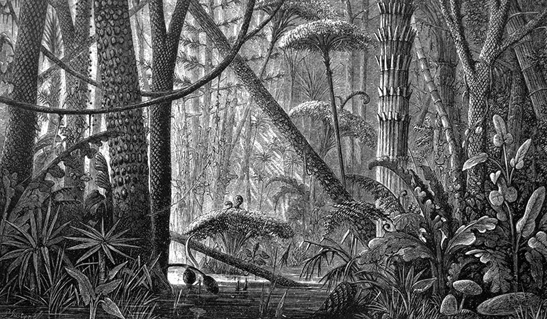 A woodcut illustration of a subterranean jungle.