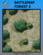 Battlemap Forest 3