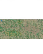 Forest Road Map