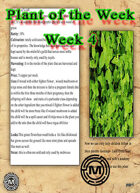 Fantasy Plant for any RPG (week 4)