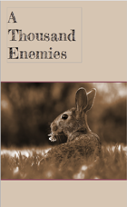 A Thousand Enemies - A Rabbit Warren Dread Supplement