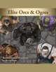 Devin Token Pack 117 - Elite Orcs & Ogres