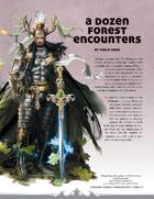 A Dozen Forest Encounters