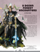 A Dozen Forest Encounters