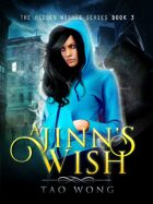 A Jinn's Wish: Book 3 in the Hidden Wishes series