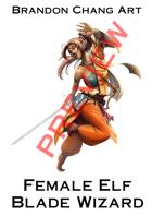 Fantasy Character Stock Art: Female Elf Blade Wizard