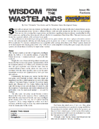 Wisdom from the Wastelands Issue #6: Factions