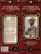 The Dark Elf City of Hosuth