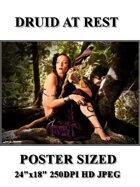 DunJon PosterJPG  #56 (Druid At Rest)