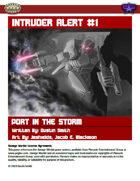 Intruder Alert #1: Port in the Storm