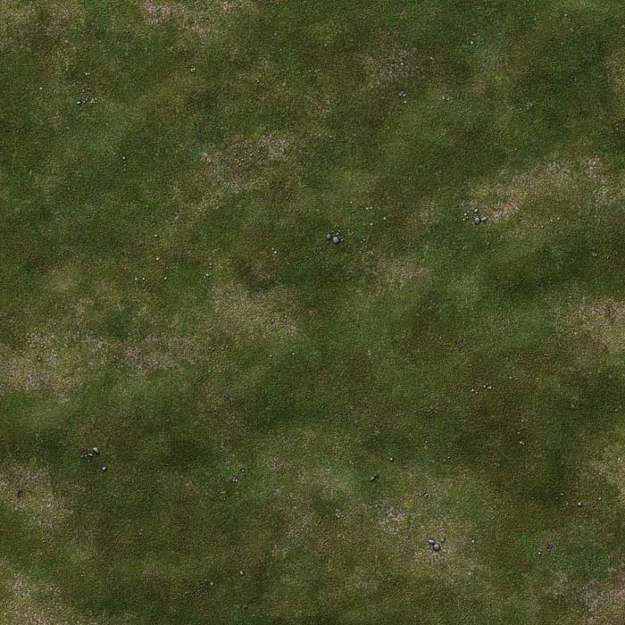 gallery-grassy-plain-battle-mat-01c.jpg