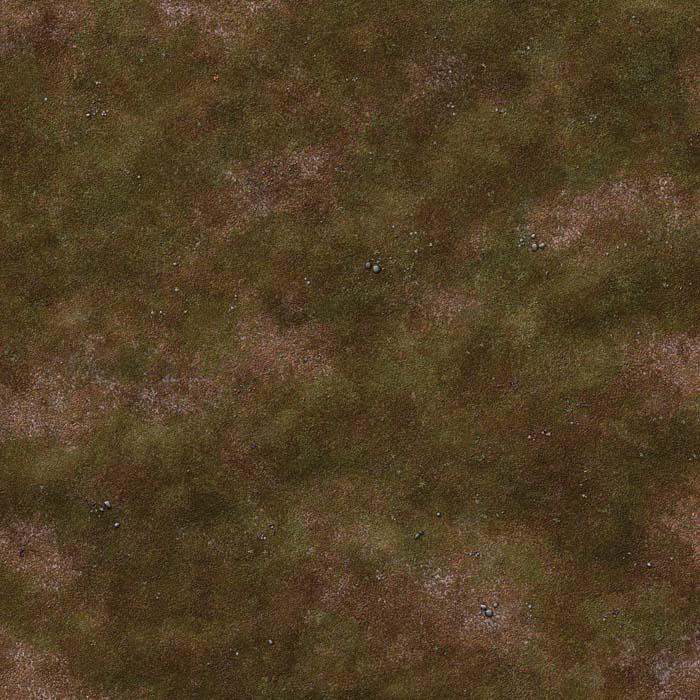 gallery-grassy-plain-battle-mat-01d.jpg