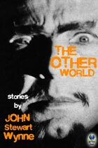 The Other World: Stories by John Stewart Wynne