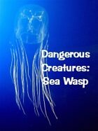 Dangerous Creatures:  Sea Wasp