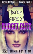 A Beth-Hill Novel: Karen Montgomery Series Book 1: Budget Cuts