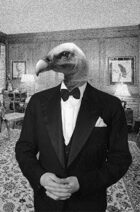 Table Top Vulture: Episode 4 – The Human Series (Part 4 of 5)