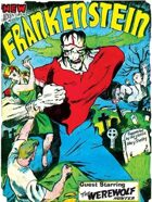 New Adventures of Frankenstein