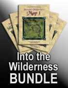 Into the Wilderness [BUNDLE]