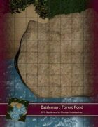 Battlemap : Forest Pond