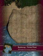 Battlemap : Forest Pond