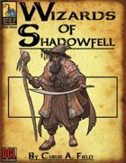 Wizards of Shadowfell