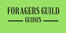 Foragers Guild Guides
