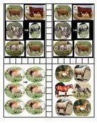 Western Tokens - Herds of 100
