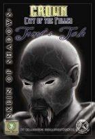 Skein of Shadows: Tenet's Tale