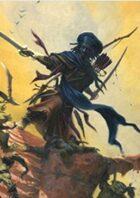 Pregen Characters: Human Druid (5e)