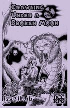 Crawling Under A Broken Moon fanzine issue #16 (DCC)