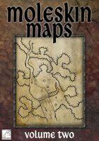 Moleskin Maps 02