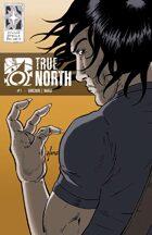True North #1