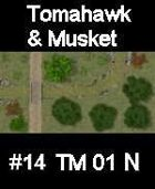 Stream #14 TOMAHAWK & MUSKET Series for Skirmish rules