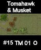 Stream #15 TOMAHAWK & MUSKET Series for Skirmish rules