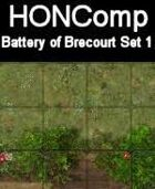 HONComp Battery of Brecourt Set #1
