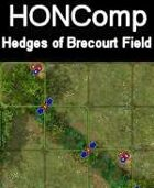 HONComp Hedges of Brecourt Field