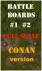 BattleBoards #1 #2 The Gate Of The Swamp CONAN Version