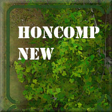 HONComp NEW