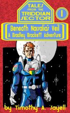 Beneath Narsalia's Veil: A Bradley Brackett Adventure (Tales From the Triddian Sector #1)