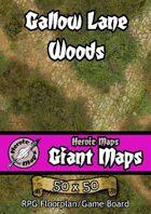 Heroic Maps - Giant Maps: Gallow Lane Woods